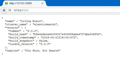 Elasticsearch Test In Browser