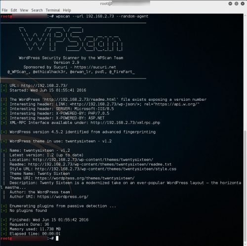 wpscan1